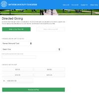 Custom Donations screenshot